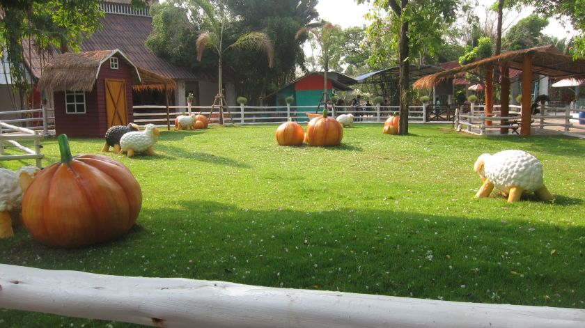 Strange lambs and pumpkins at Sri Racha Tiger zoo, Chon Buri