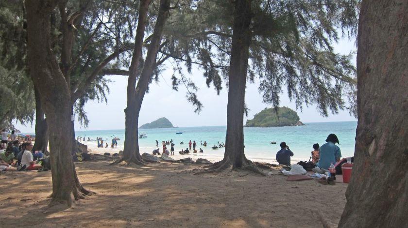 The Beach at Sattahip, no ugly umbrellas, just shady trees...