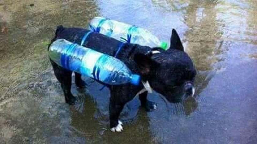 Flood Proof
